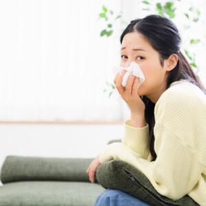 Heizzeit ist Nasenblutenzeit 3