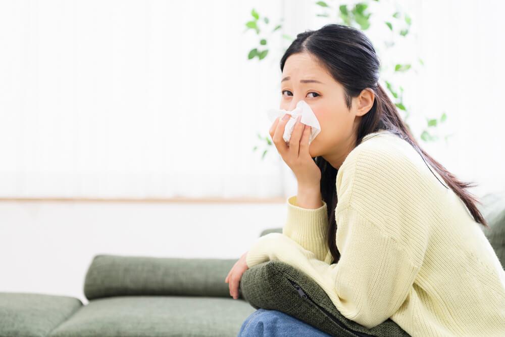 Heizzeit ist Nasenblutenzeit 10